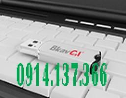 Báo giá chữ ký số BKav