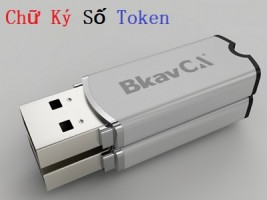 Gia hạn token Bkav